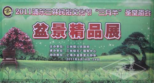 上海古猗园办杜鹃盆景展