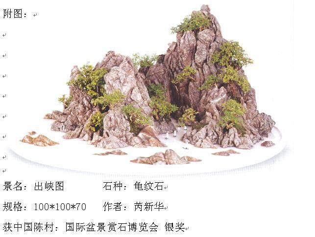 首届全国网络盆景展在南京古林公园开幕