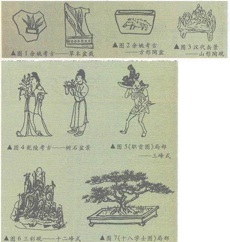盆景基础理论讲座之三 中国盆景简史