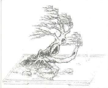 设计基调是在风动式盆景的理念
