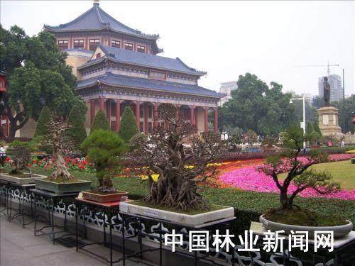 中国盆景重要的历史进程