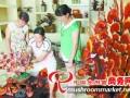 湖南:灵芝盆景助农增收