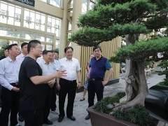 青海省政协领导来园艺城考察花木盆景产业