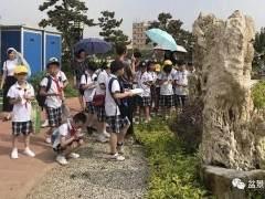 我们乘着车 来到了鸿江盆景园