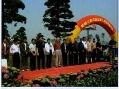 杭州怡然植物园的盆景市场价格也很便宜