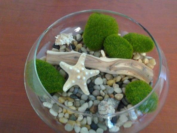 【海滩主题】浪漫海星玻璃盆景  教程 第5步