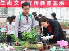 黄垡苗圃彩叶植物盆景创艺DIY活动回顾