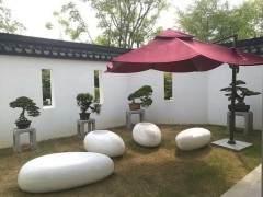 2018年上海秋季盆景展于国庆之际拉开帷幕