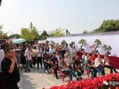 宁波第五届盆景艺术展开幕