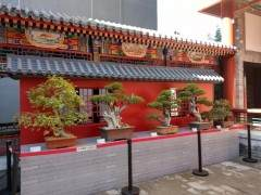 2018北京市植物园·北方盆景秋季作品展