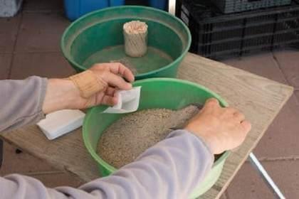盆景施肥:如何用肥料填充茶包?
