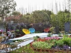 杭州的萧山也是全省重要的花卉苗木生产基地