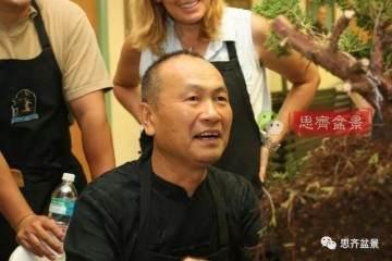 台湾盆景大师郑诚恭改作的一棵榕树