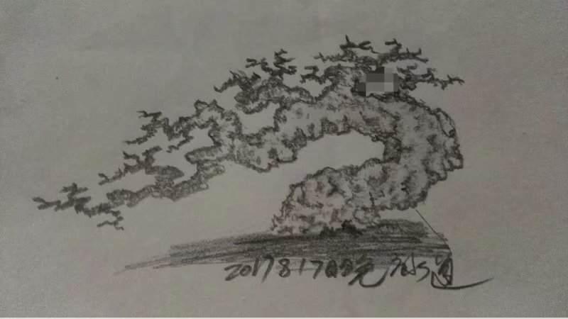 漫谈榕树盆景的可塑性
