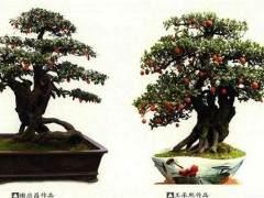 榆树下山桩怎样养桩 多久生根发芽 图片