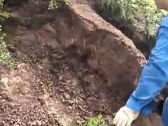 男子山上挖大型金弹子下山桩 把山都挖塌了 图片