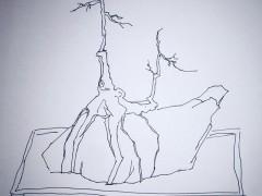 小下山桩怎么造型 我的3棵下山桩设计图片
