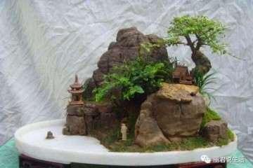 制作山石盆景的5个设计步骤 图片