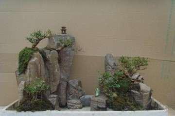 制作山水盆景怎么山石组合的方法