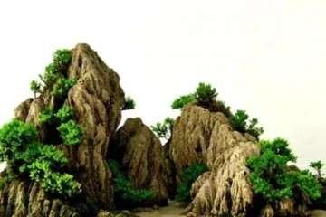 怎么制作山水盆景的3个步骤 图片