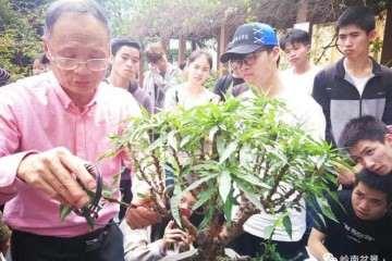 广东科贸职业学院2019年盆景经理人培训