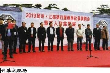 扬州江都举办盆景展销会蟹文人树专题展