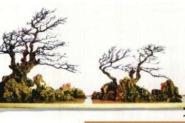 樹石盆景怎么做到形神兼備的方法