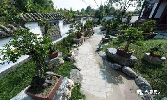 我想到郊区建一座盆景园