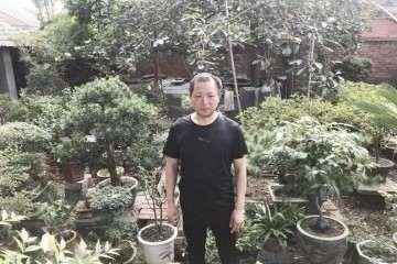 王滨对盆景的栽植很有研究经验