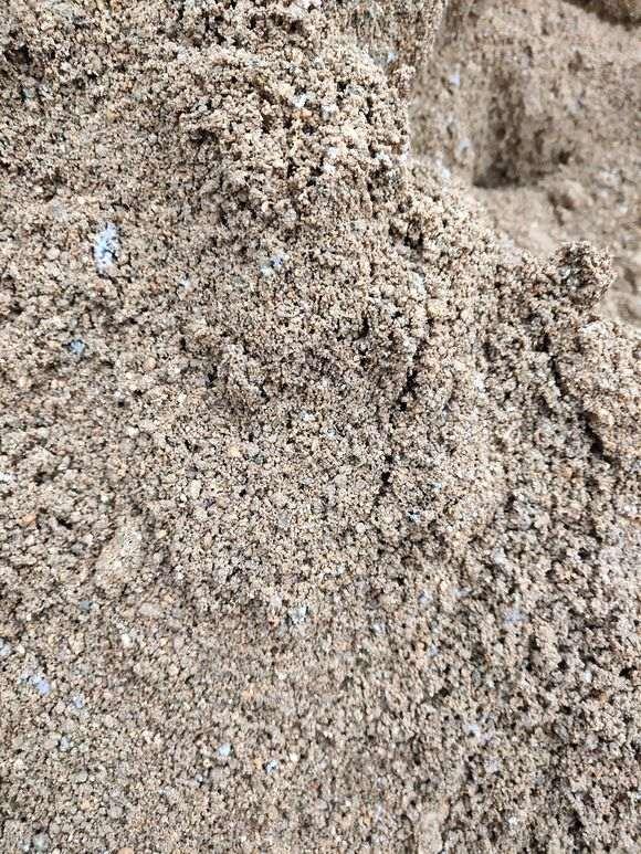 这样的黄沙种植下山桩生桩怎么样
