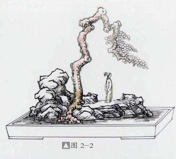 石上文人式盆景怎么制作的方法