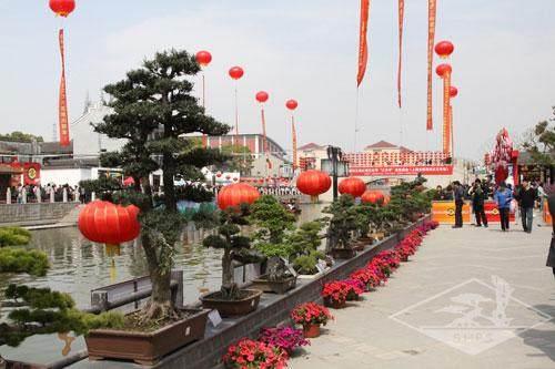 上海植物园欢迎您!