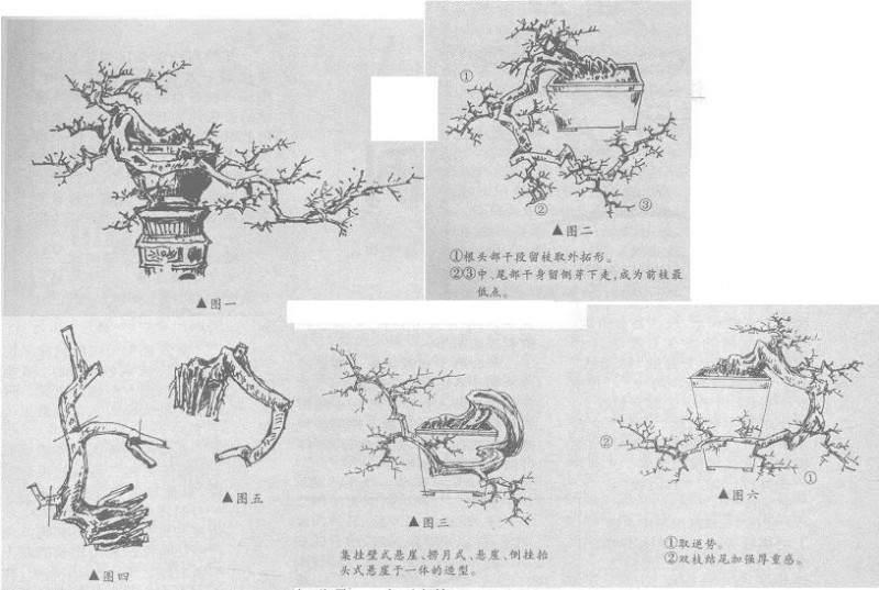 图解 捞月型悬崖桩怎么造型设计的方法