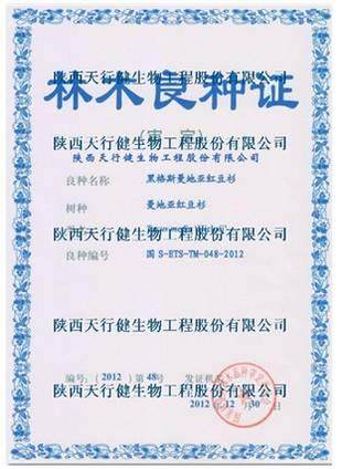 陕西天行健黑格斯曼地亚红豆杉通过国家良种审定