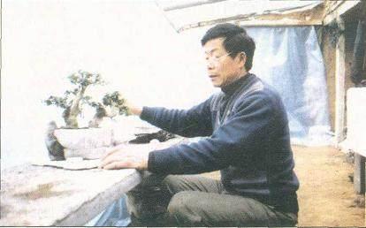 中国盆景艺术大师梁玉庆先生