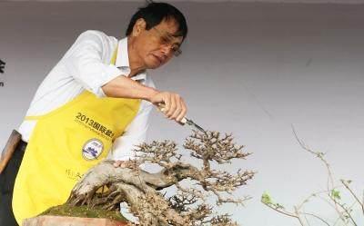 吴成发:国际盆景大师