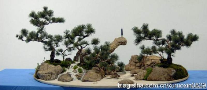 山水盆景的泥塑盆景制作过程