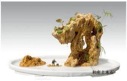 吸水石盆景的制作