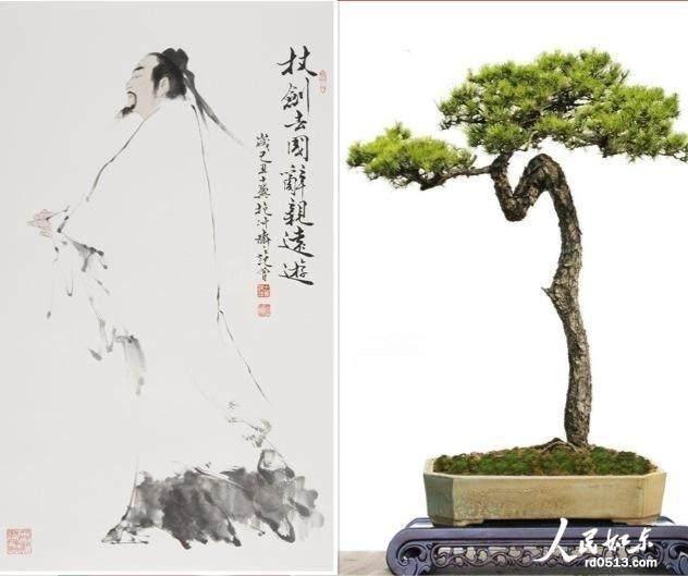 《铮铮铁骨》颇具文人树盆景的造型