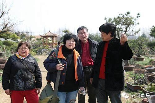 王恒亮和他的新徽派盆景