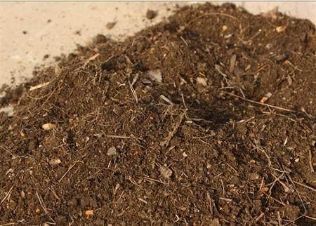 盆栽花卉常见的土壤