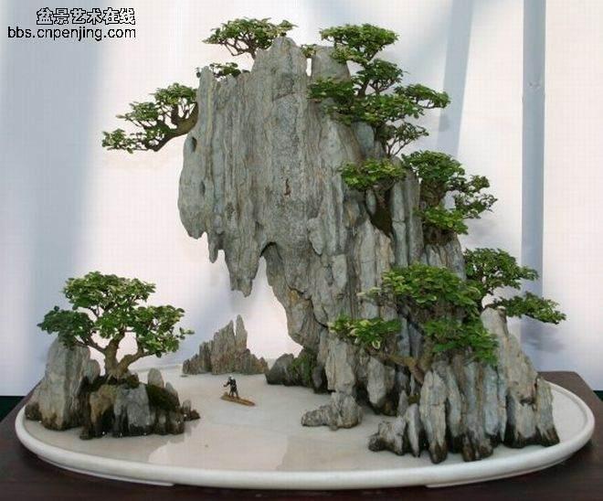 湖北:来凤县花木盆景致富河坪众乡亲