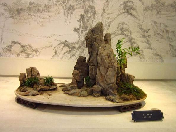 2008年4月在苏州举办第十八届中国园艺与盆景艺术