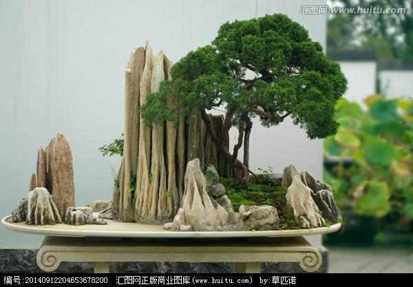"""近看""""假山盆景"""" 远看""""泼墨山水"""""""