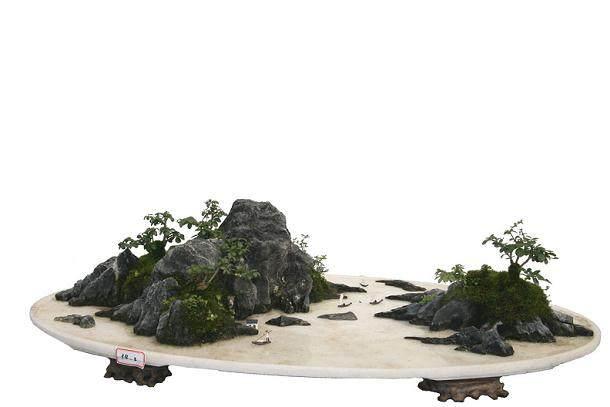 捡到二块上水石自己打造的假山盆景贴上了青苔 长得很好