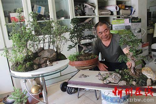 淮安花卉市场上的绿色盆景也颇受市民喜爱