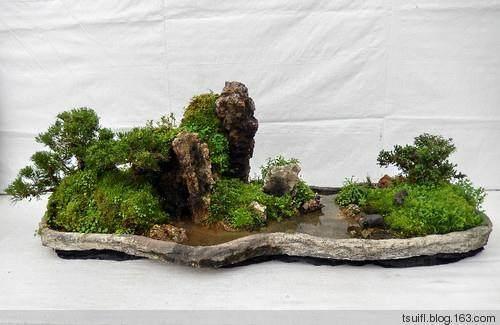 如何让山水盆景中的花木有增加气势?