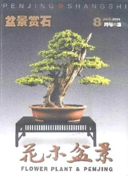花木盆景杂志社考察广东、海南盆景