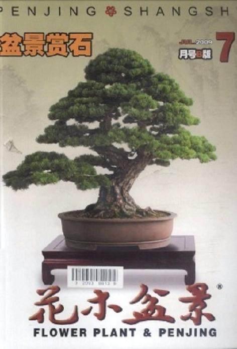 次有奖征集花木盆景杂志广告语活动获奖名单揭晓如下