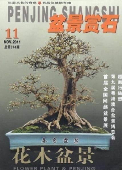 《花木盆景》杂志由湖北省美化委员会主办